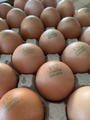 Ägg för avhämtning